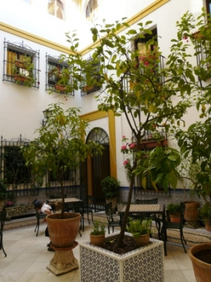 Fusion in Córdoba_13