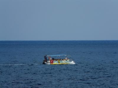 Golfinhos & snorkling_16