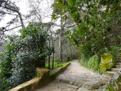 Romantiek, fauna en flora_2